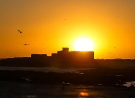 Ile de Mogador Essaouira