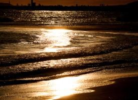 Une Mer en Or