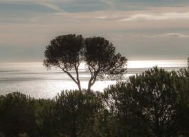 Vue du St Clair, Sète