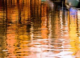 le surréalisme de l'eau et ses reflets