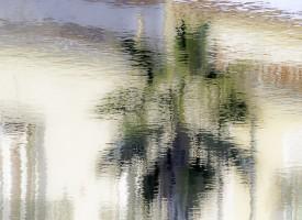 Pictural impressionnisme Le Palmier
