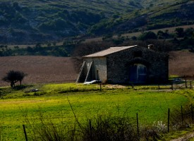 Aumelas bergerie