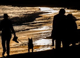 Promenade au bord de plage La Grande Motte