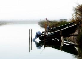 Barques sur les rives des Aresquiers