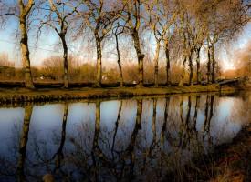 Un Canal en Or, Agde