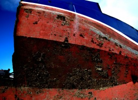 Une-Histoire-de-Mer